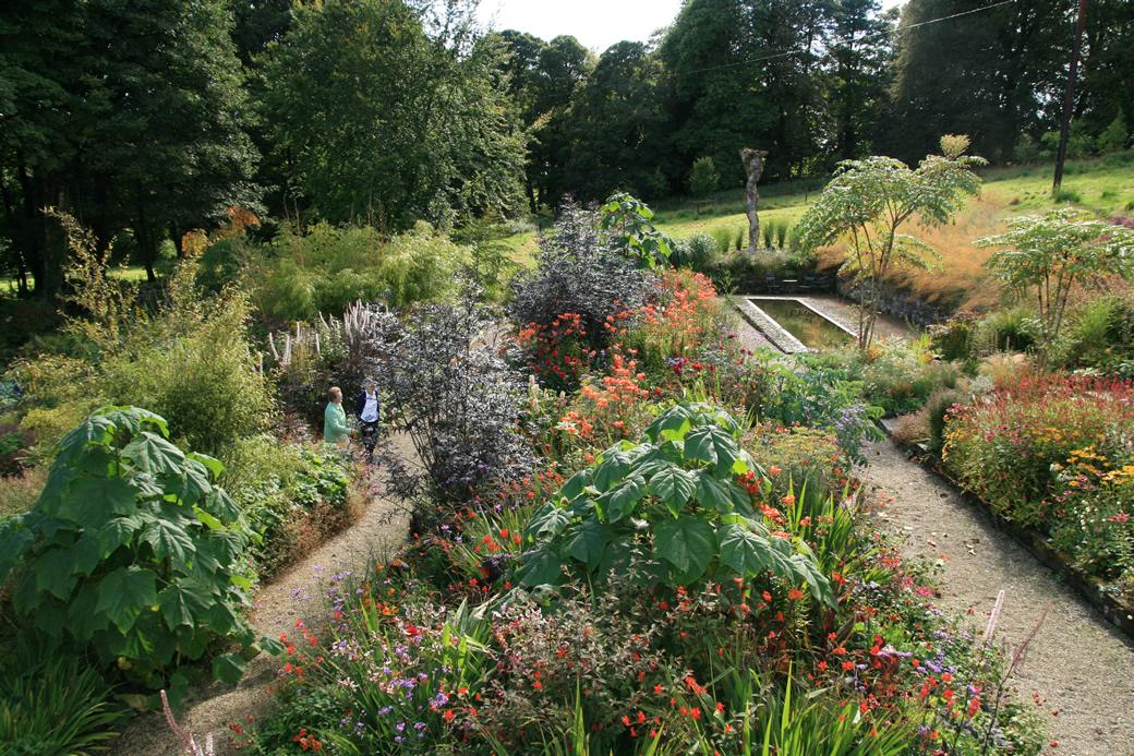 garden sept 4th 2011 075